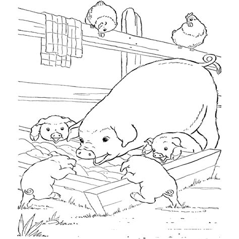 coloring coloring pictures  farm animals  kids