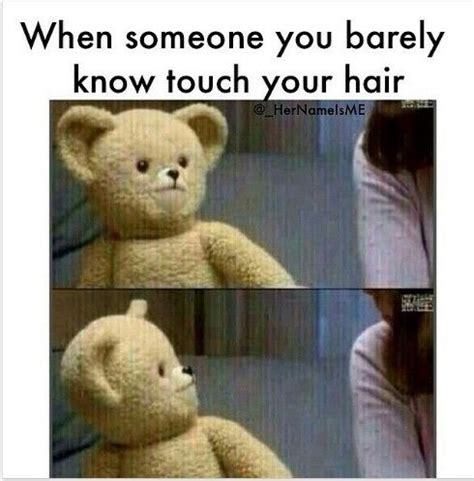 ted bear meme www pixshark com images galleries with a