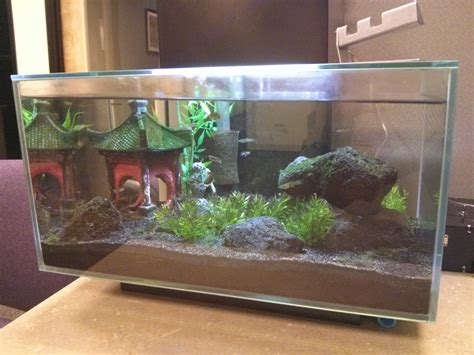 Wars Fish Tank Decorations by 100 Wars Fish Tank Decorations The Is