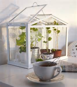 Decorative Small Green Homes ikea socker indoor miniature greenhouse the green