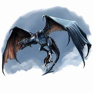 Wyverns vs Dragons