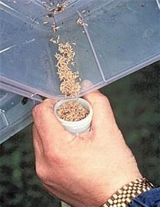 Produit Contre Les Termites : kit anti termite 1 pi ge termite 1 app t hexaflumeron eco ~ Melissatoandfro.com Idées de Décoration