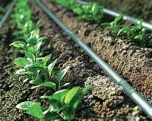 Drip Irrigation System,Irrigation System,Drip Irrigation ...
