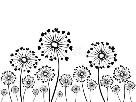 black  white vector dandelion herbs stock vector