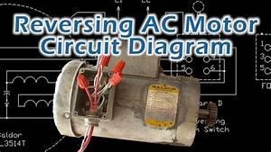 Baldor L1408t Capacitor Wiring Diagram  Get Baldor L1410t