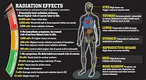Top Strategies To Avoid Protect Yourself From Radiation