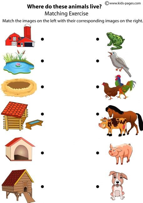 worksheets it s to learn - Homes Of Animals Worksheets For Kids