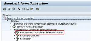 Sap Lieferschein Anzeigen Transaktion : berechtigung zur nderung von rollen ~ Themetempest.com Abrechnung