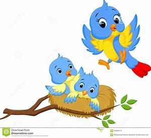 Cartoon Bird Nest : Kids Coloring - europe-travel-guides.com