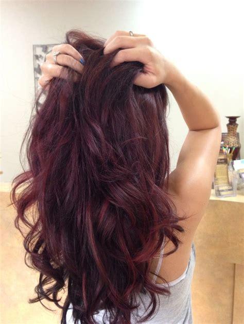 Best 25 Red Violet Hair Ideas On Pinterest Violet Red