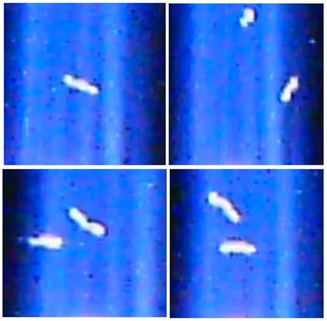 Ufo Unexplained Phenomena Top Stories