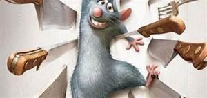Comment Tuer Un Rat : tuer un rat rapidement taupier sur la france ~ Mglfilm.com Idées de Décoration