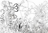 Garden Flower Drawing Rose Bed Sketch Gardens Simple Getdrawings Sketches Paintingvalley sketch template