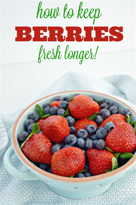 how to wash blueberries how to clean and keep berries fresh longer mom 4 real