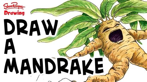 screaming plants harry potter how to draw a screaming mandrake harry potter youtube