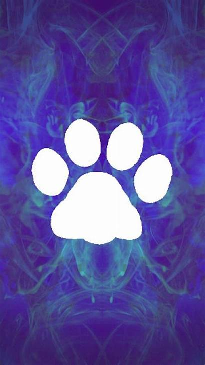 Paw Wallpapers Backgrounds Prints Blues Zedge