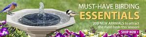 Duncraft: Bird Feeders Bird Houses Bird Seed Bird Baths