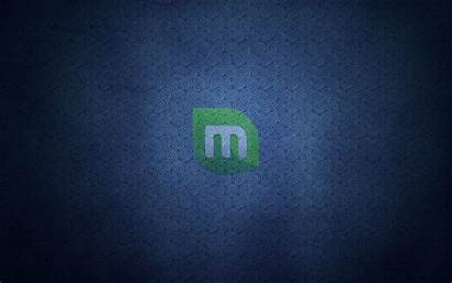 Linux Wallpapers Mint Desktop Abstract Backgrounds 3d