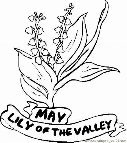 Coloring Pages Lily Valley Flowers Printable Flower