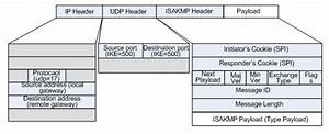 Packet Structure In Vpn