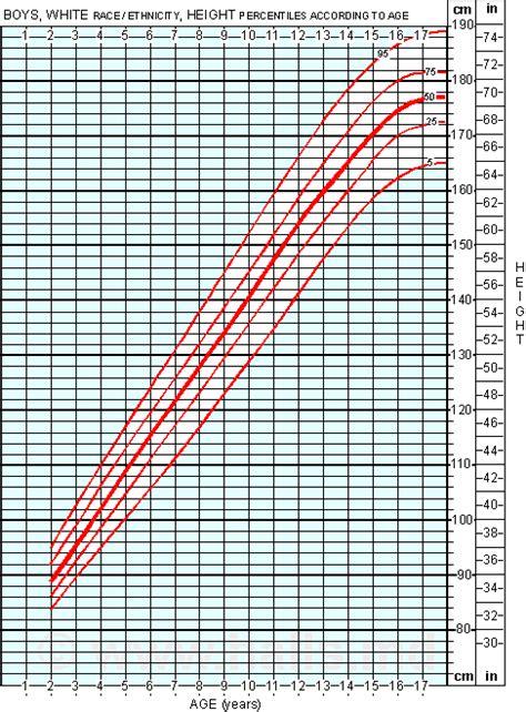average height  boys growth chart  boys age