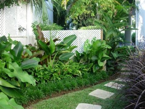 tropical garden bed tropical landscape design pictures remodel decor and ideas page 44 subtropical gardens