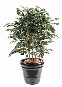 Ikea Plantes Artificielles : plante artificiel ~ Teatrodelosmanantiales.com Idées de Décoration