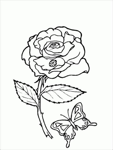 dessins de coloriage coccinelle  papillon  imprimer