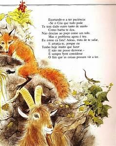 The Red Fox Lair  A Raposa E O Bode