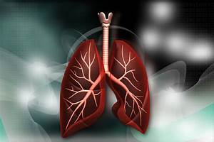 Double Lung Transplantation Improves Survival In