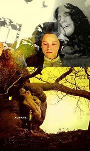 Always - Severus Snape & Lily Evans Fan Art (28832552 ...