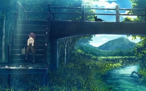 anime river bridge cat senjougahara hitagi monogatari