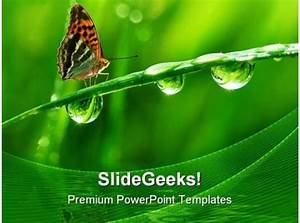 Dew And Butterfly Nature Powerpoint Templates And