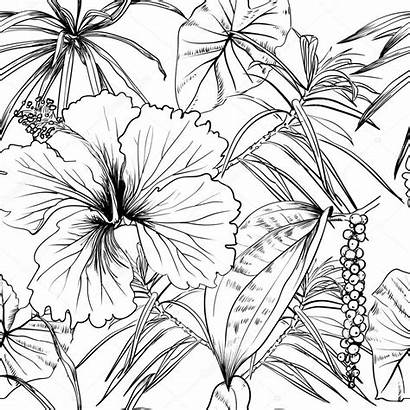 Tropical Flowers Exotic Leaves Pattern Vector Coloring
