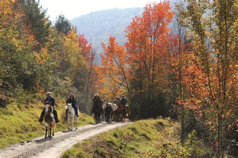 Virginia Highlands Horse Trail  Virginia Is For Lovers