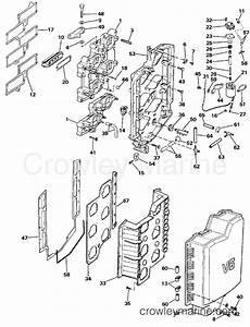 intake manifold 1986 evinrude outboards 200 e200stlcdr With diagram of 1986 e70elcdc evinrude intake manifold diagram and parts