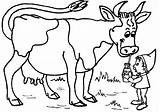 Cow Coloring Printable Milk sketch template