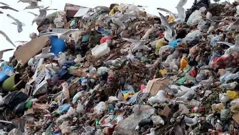 burning garbage dump ecological pollution stock footage