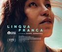 Comentários | Língua Franca por - 26 de Agosto de 2020 ...