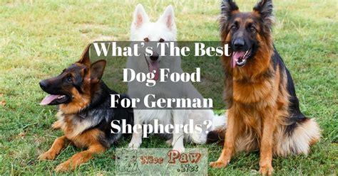 whats   dog food  german shepherds german