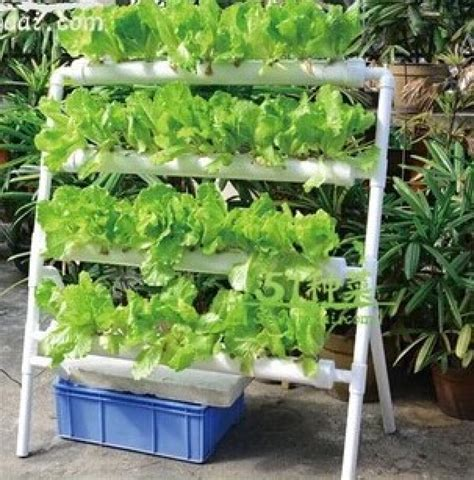 Vertical Gardening System by Hydroponics Soil Less Gardening Vertical Garden
