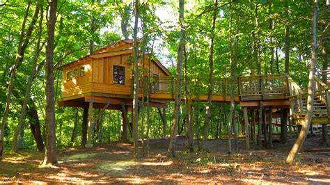 treehouse   nature kids dream  true youtube