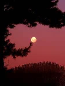 Pink Full Moon Sky