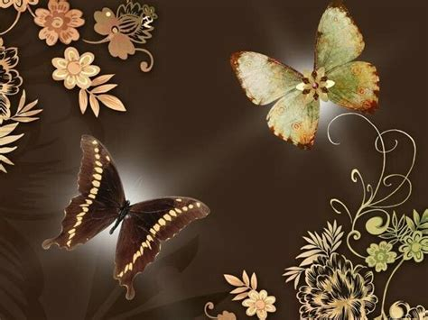 the colors here butterfly wallpaper wallpaper
