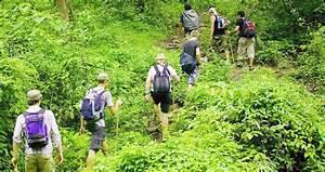 Bali Jungle Trekking - BALI TRIP ADVENTURE