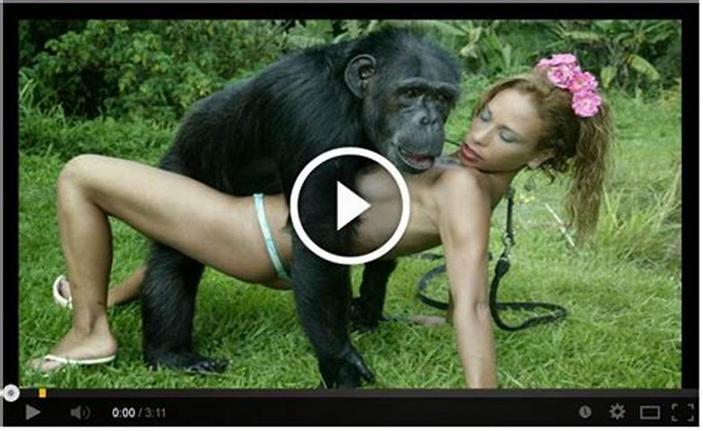 #Monkey #Sex #With #Brasilian #Girls