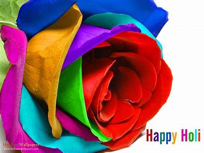 Holi Happy Wallpapers Wishes Colorful Rose Shayari