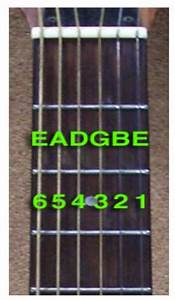 How To Tune A Guitar  Standard E Tuning  Ebgdae