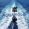🌊 嵐沙獨木舟 Aquaholic.Kayak 🌊... - 嵐沙水上活動中心 Aquaholic