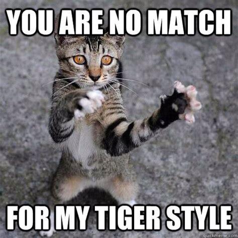 Fu Memes - no match martialartsmemes com